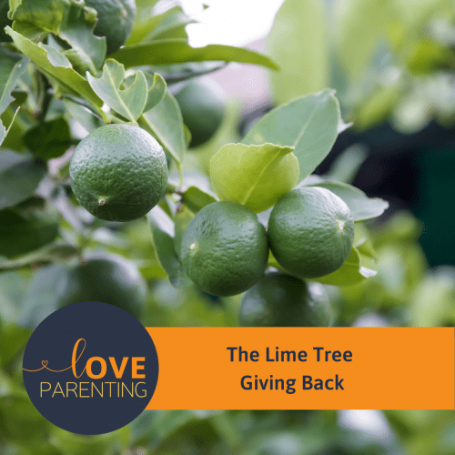 The Lime Tree – Giving Back